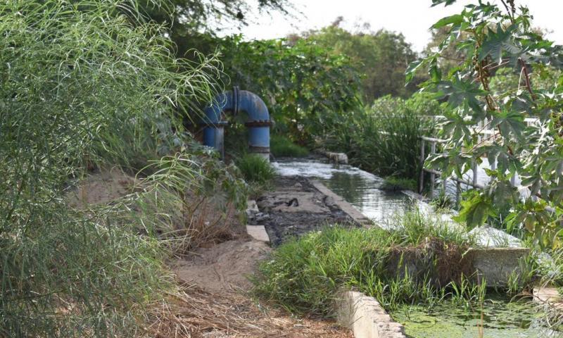 Revivez en images la visite de terrain du DG DE l'ONAS à Saly
